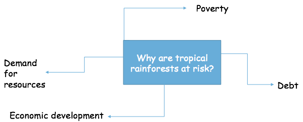 Threats to Rainforests, figure 1