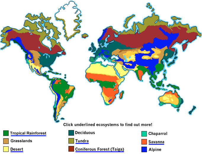 What Are Tropical Biomes Like, figure 1