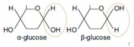 Biological Molecules, figure 2
